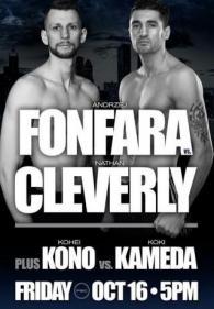 Andrzej Fonfara vs Nathan Cleverly