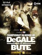 James DeGale vs. Lucian Bute